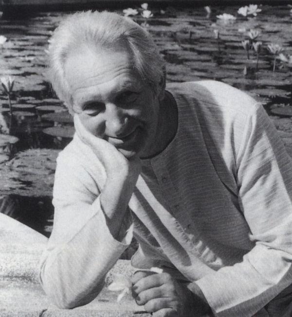 Image result for henryk skolimowski