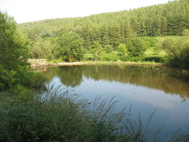 Lake near Wooler Common - geograph.org.uk - 1420417