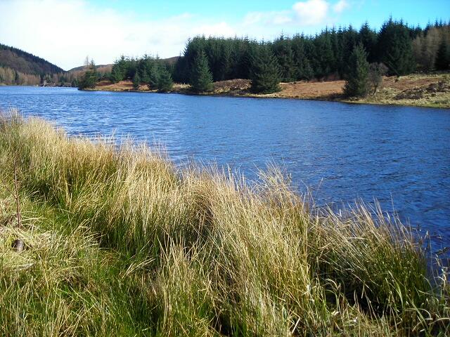 Loch Drunkie - geograph.org.uk - 736357