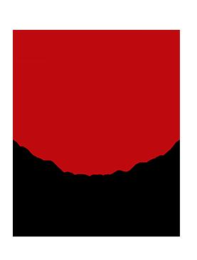 Resultado de imagen para Universidad del tolima logo