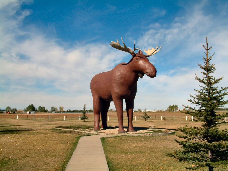 mac the moose statue in Moose Jaw, Canada