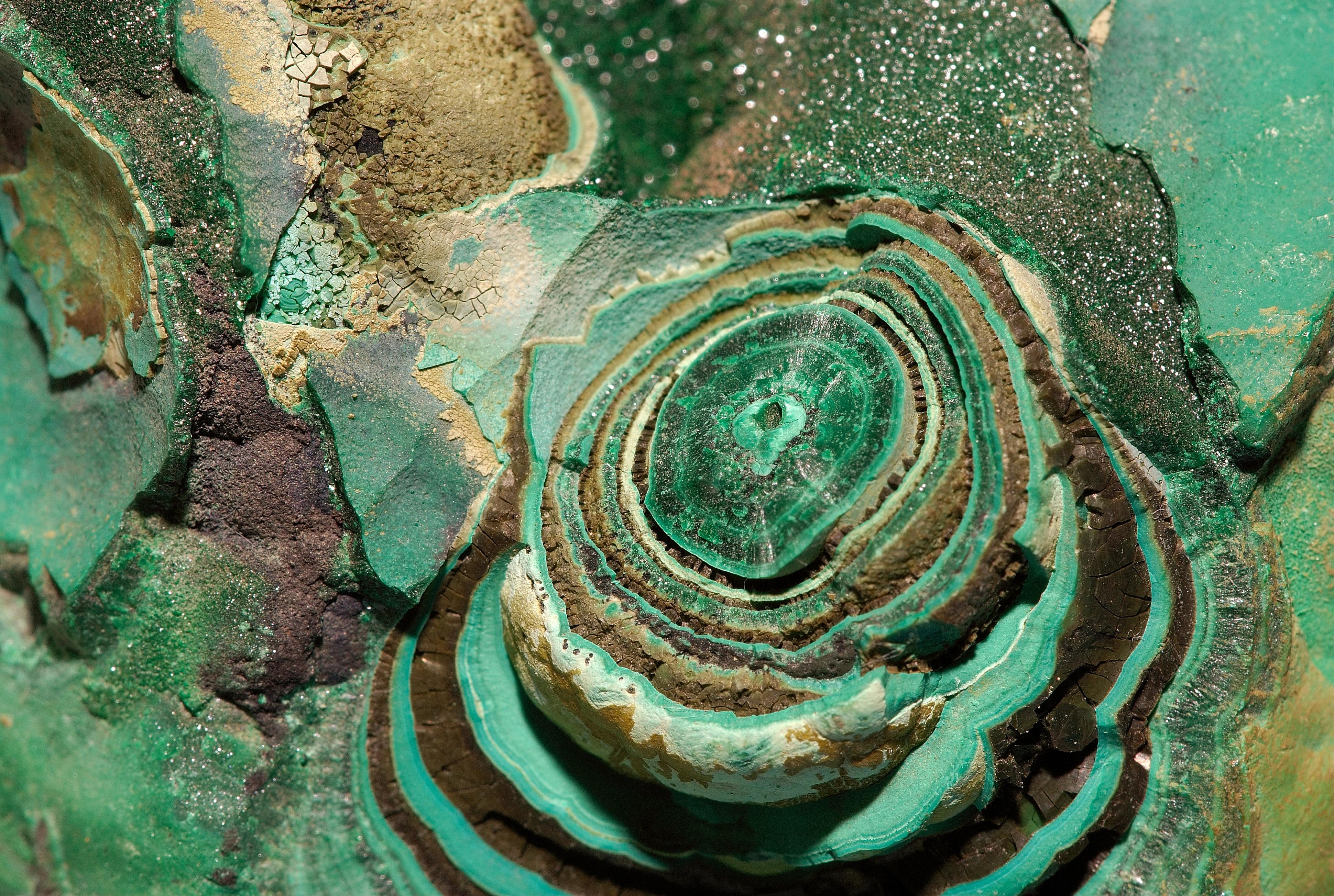 File malachite congo 2 luc wikimedia commons - Vert de malachite ...