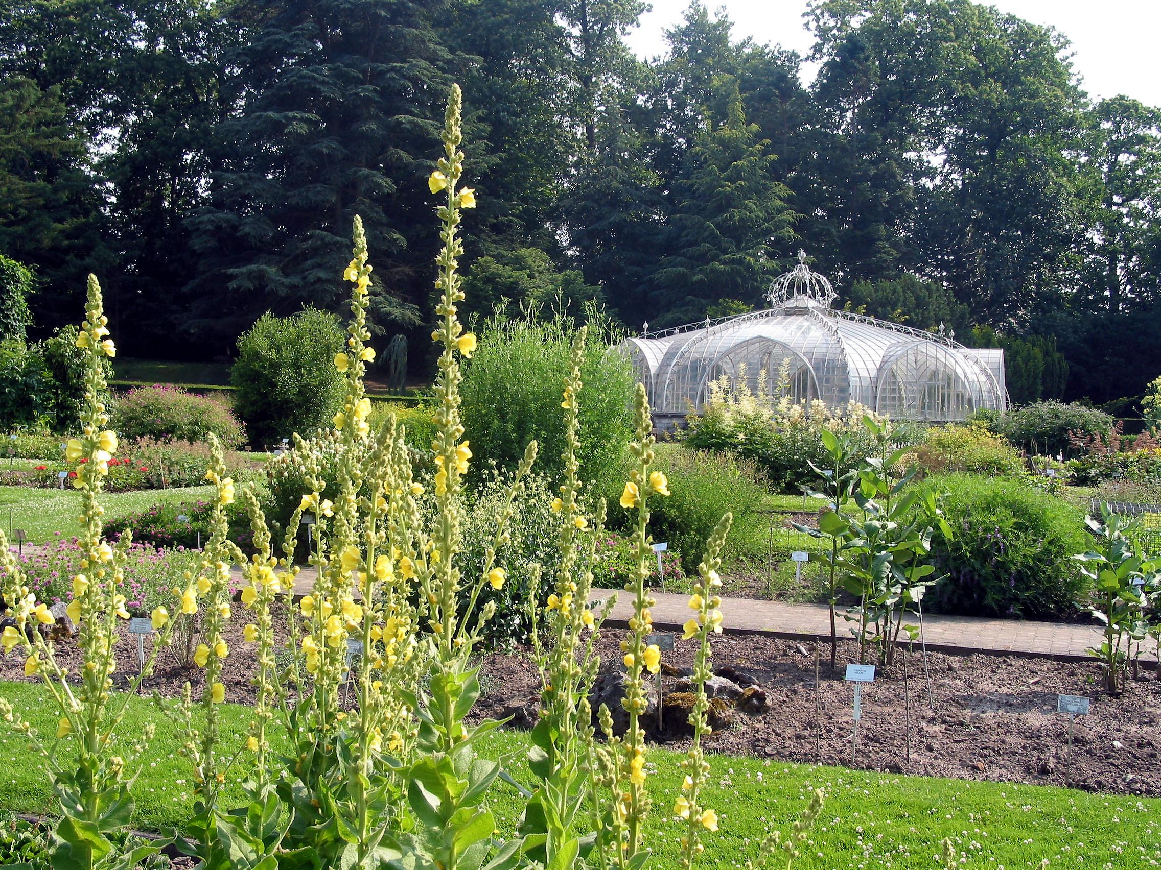 jardin botanique de meise wikiwand. Black Bedroom Furniture Sets. Home Design Ideas
