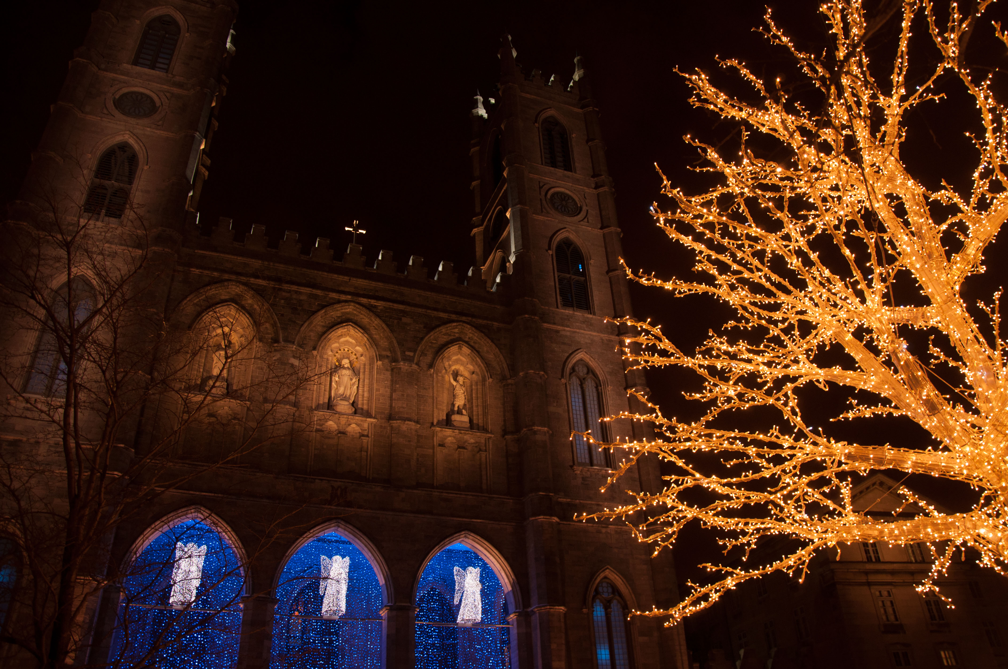 File:Notre Dame at Christmas.jpg - Wikimedia Commons