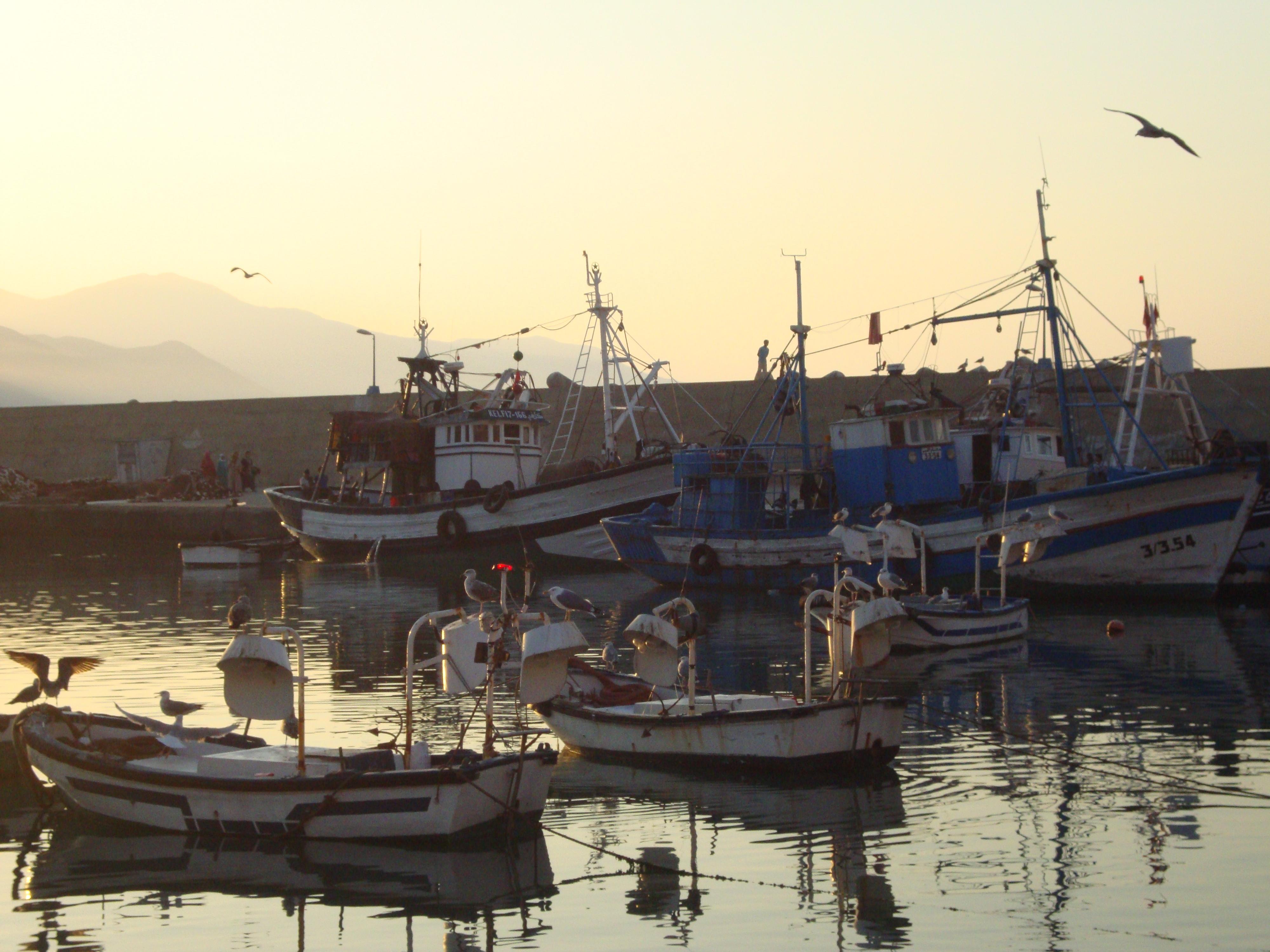 Paramonovo la pêche sans frontières