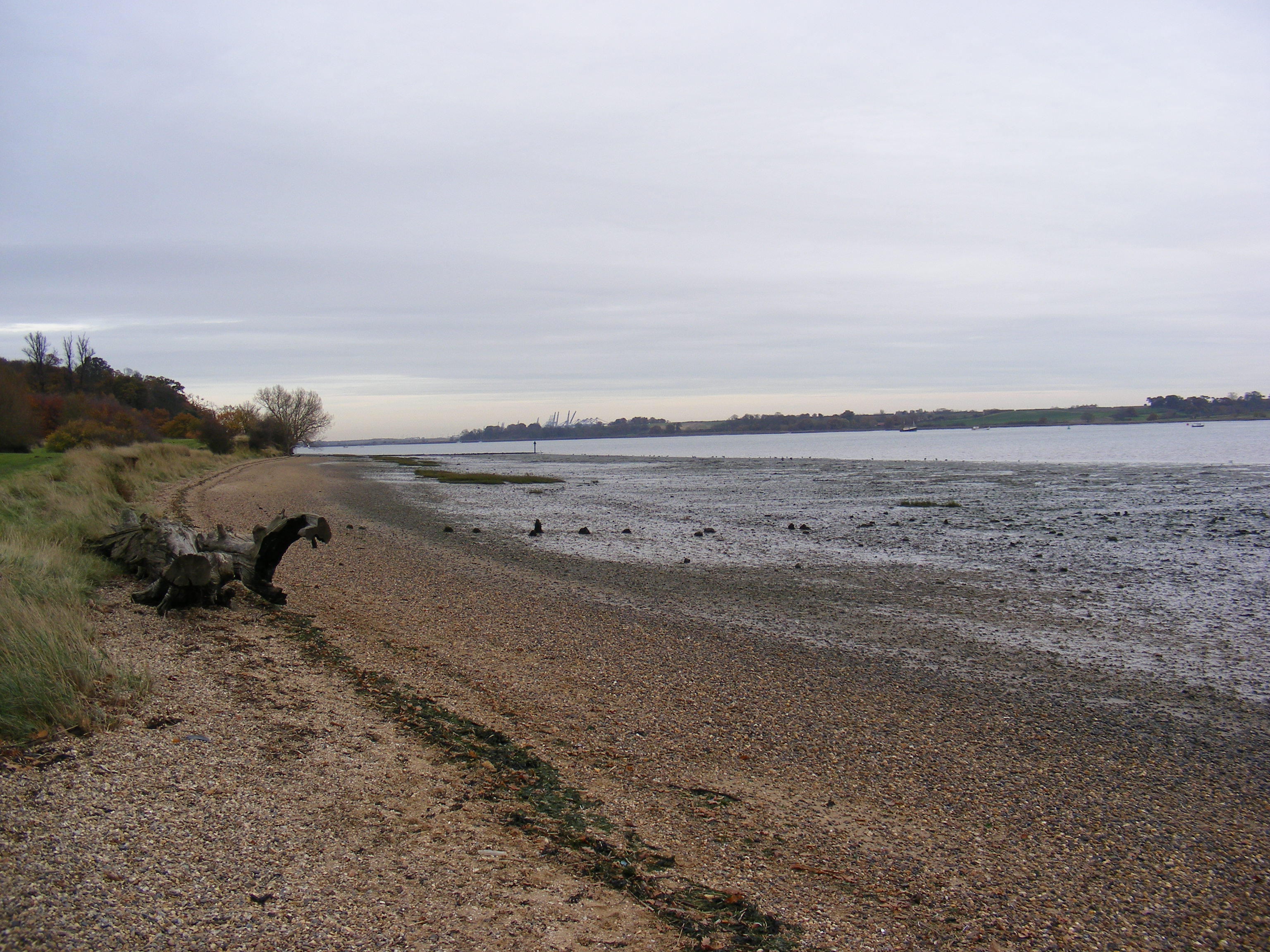Description River Orwell Shore  geograph.org.uk  1044570.jpg