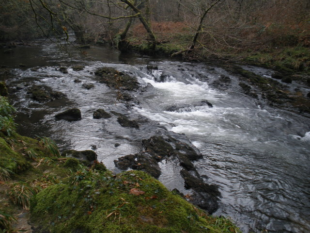 River Teign rapids, near Upperton Wood - geograph.org.uk - 1116506
