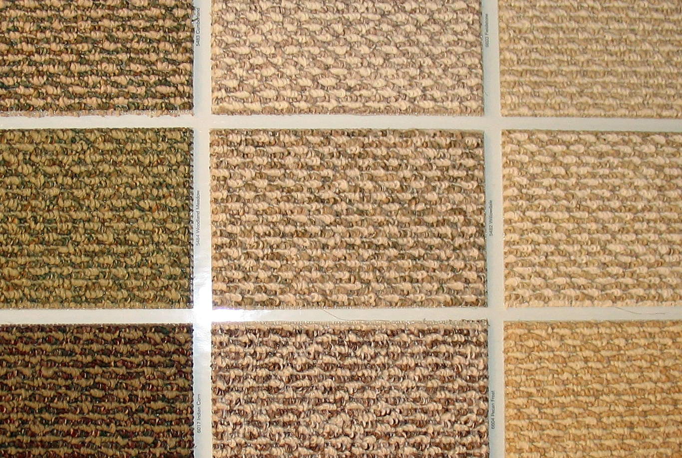 Berber Carpet Colors http://commons.wikimedia.org/wiki/File:Swatches_of_berber_carpet.jpg