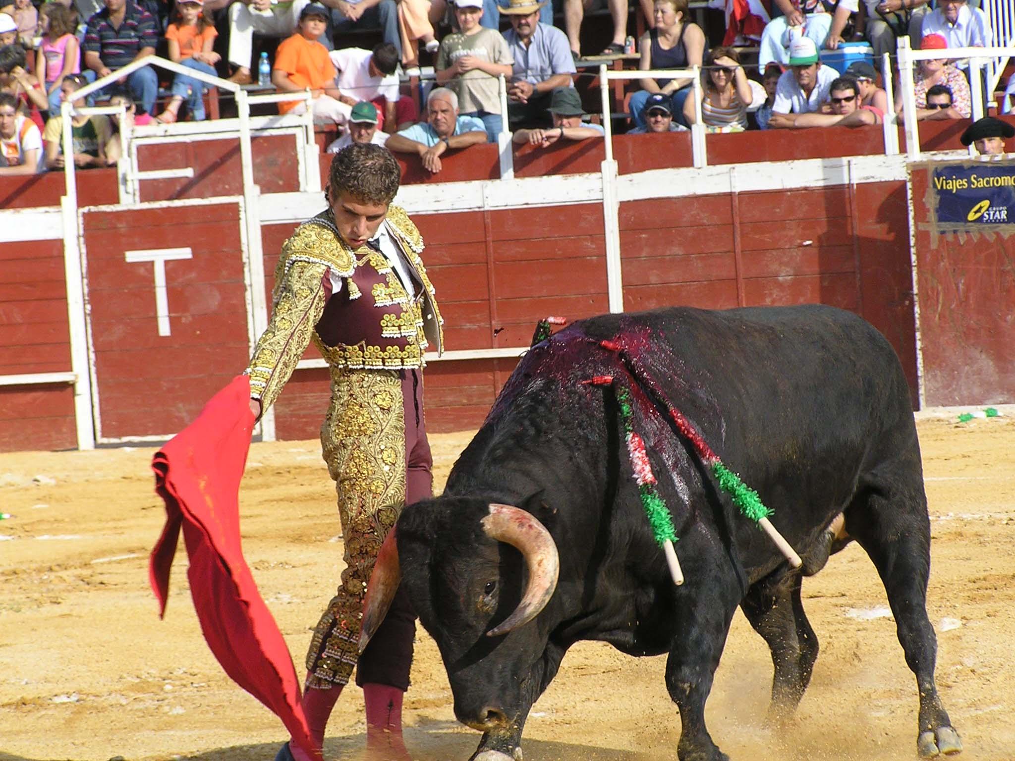 Toreros De Espana