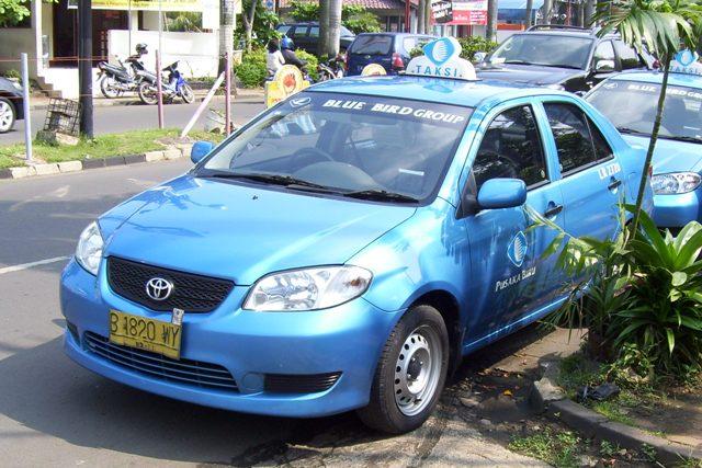 「blue bird taxi」の画像検索結果