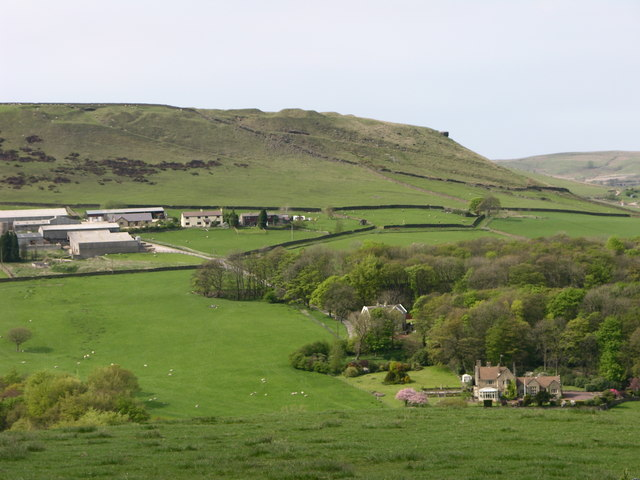Tor Hill from the South - geograph.org.uk - 418036