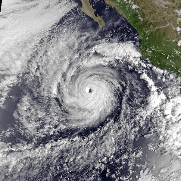 hurricane trudy  1990