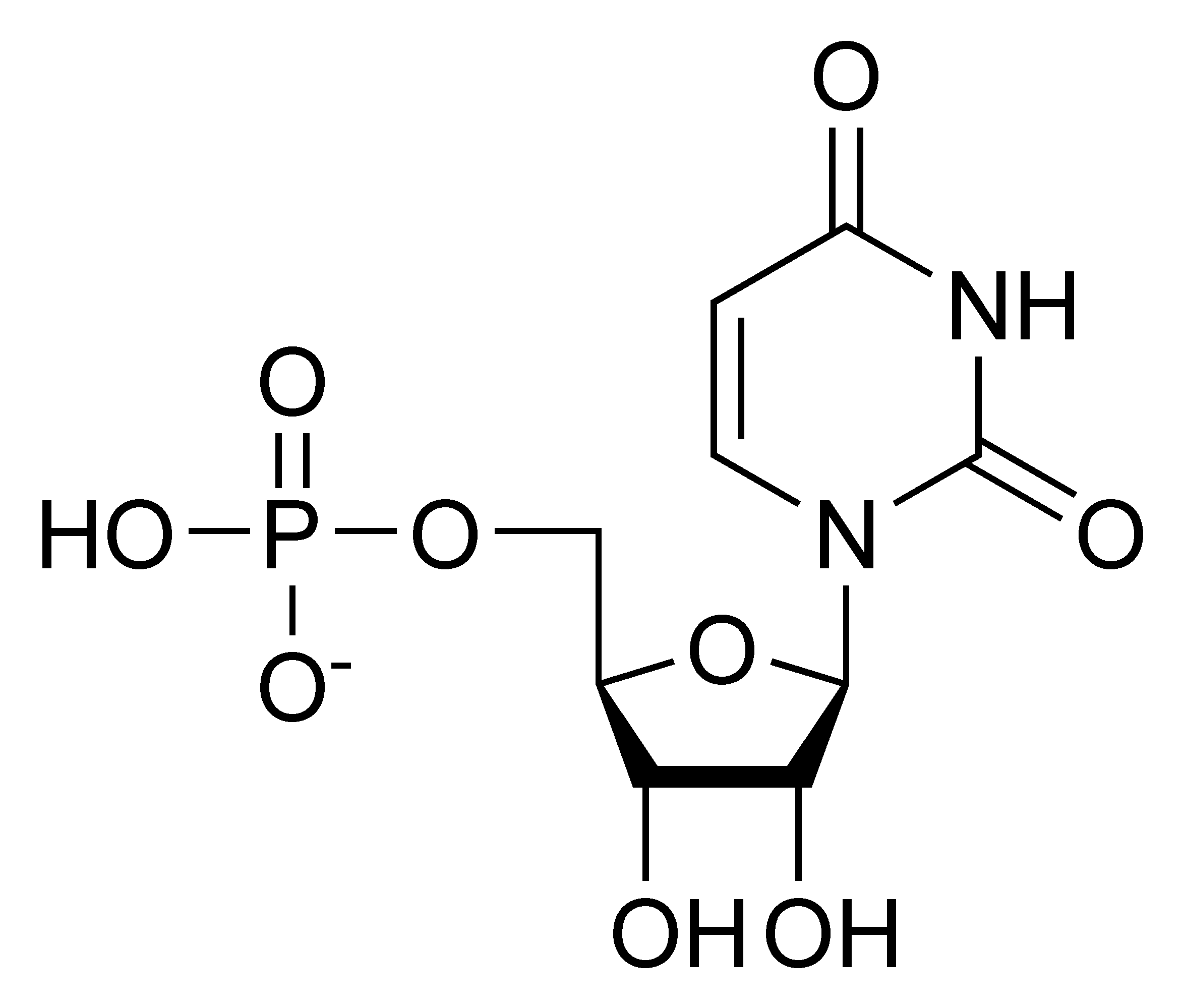 Chemical structure of uridine monophosphate