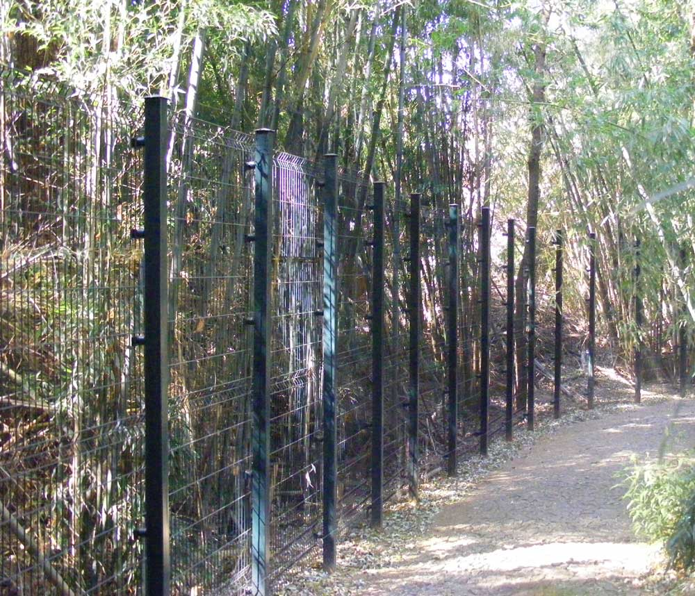 File:Wire-mesh-fence-in-park.jpg - Wikimedia Commons