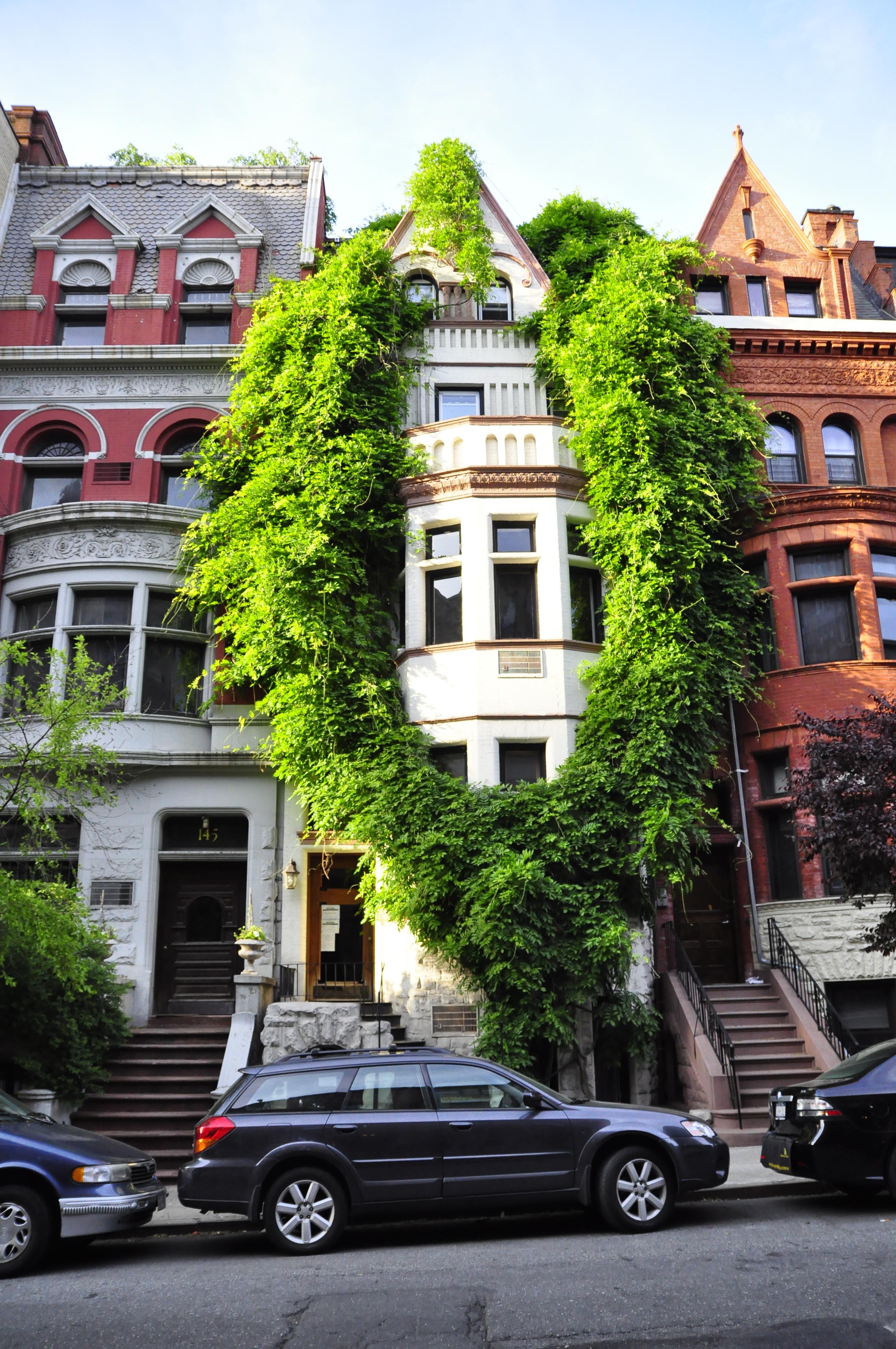 file wisteria garlanded building in upper west side. Black Bedroom Furniture Sets. Home Design Ideas