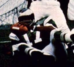 Harold Carmichael American football wide receiver