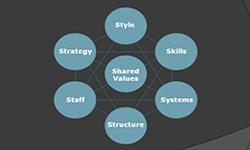 7 S Scheme from McKinsey