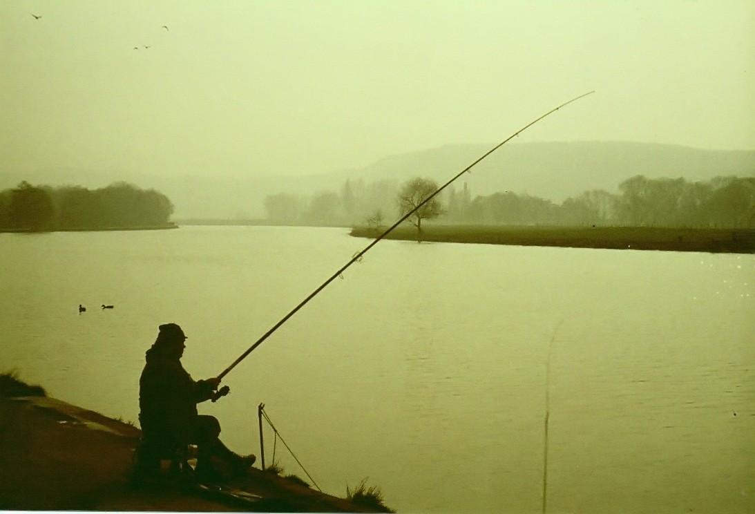 Angler Englisch