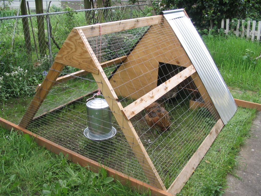Small coop for keeping 3 4 chickens kreg owners 39 community for Small chicken house plans