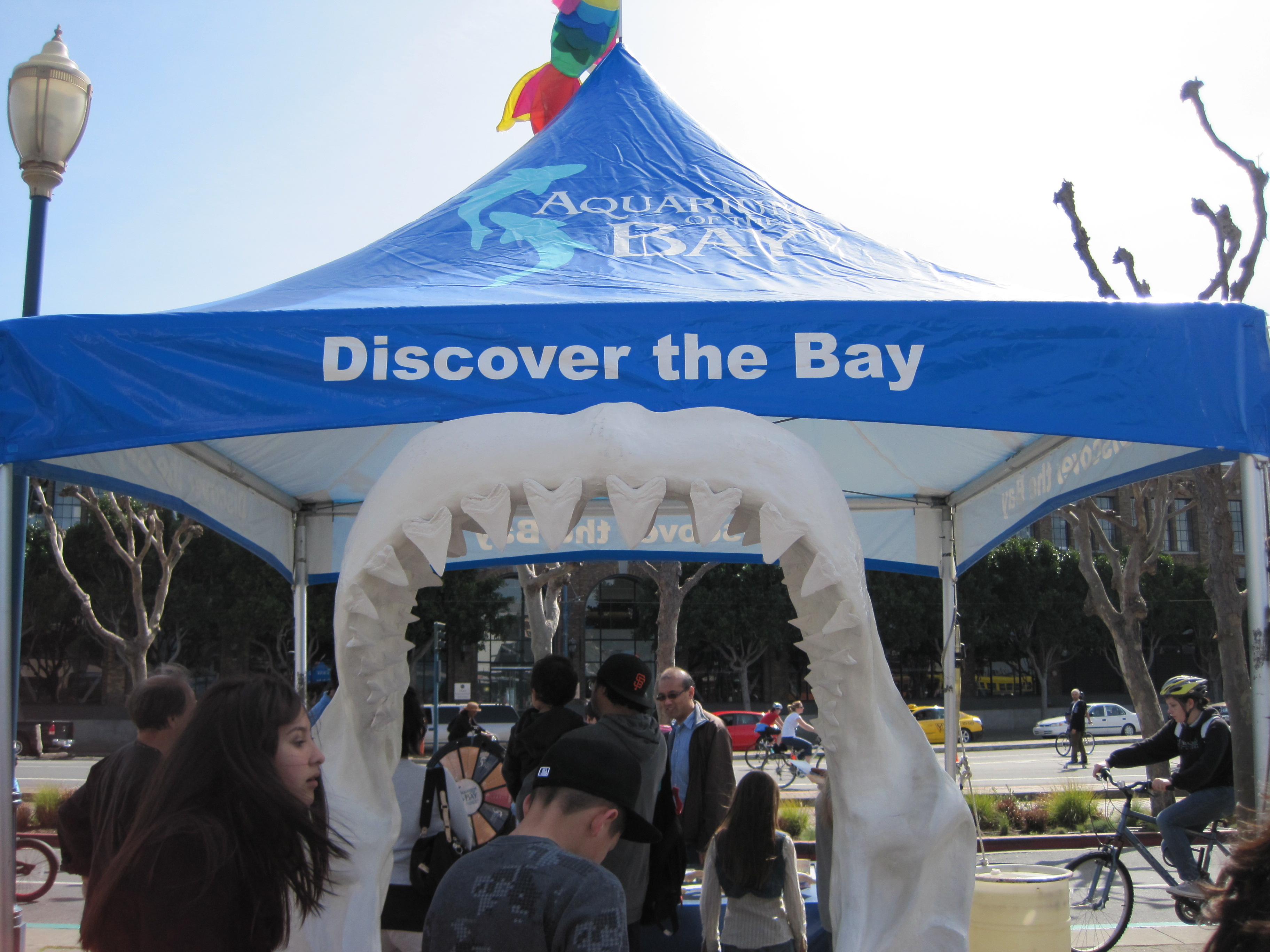 Aquarium of the bay coupons discount