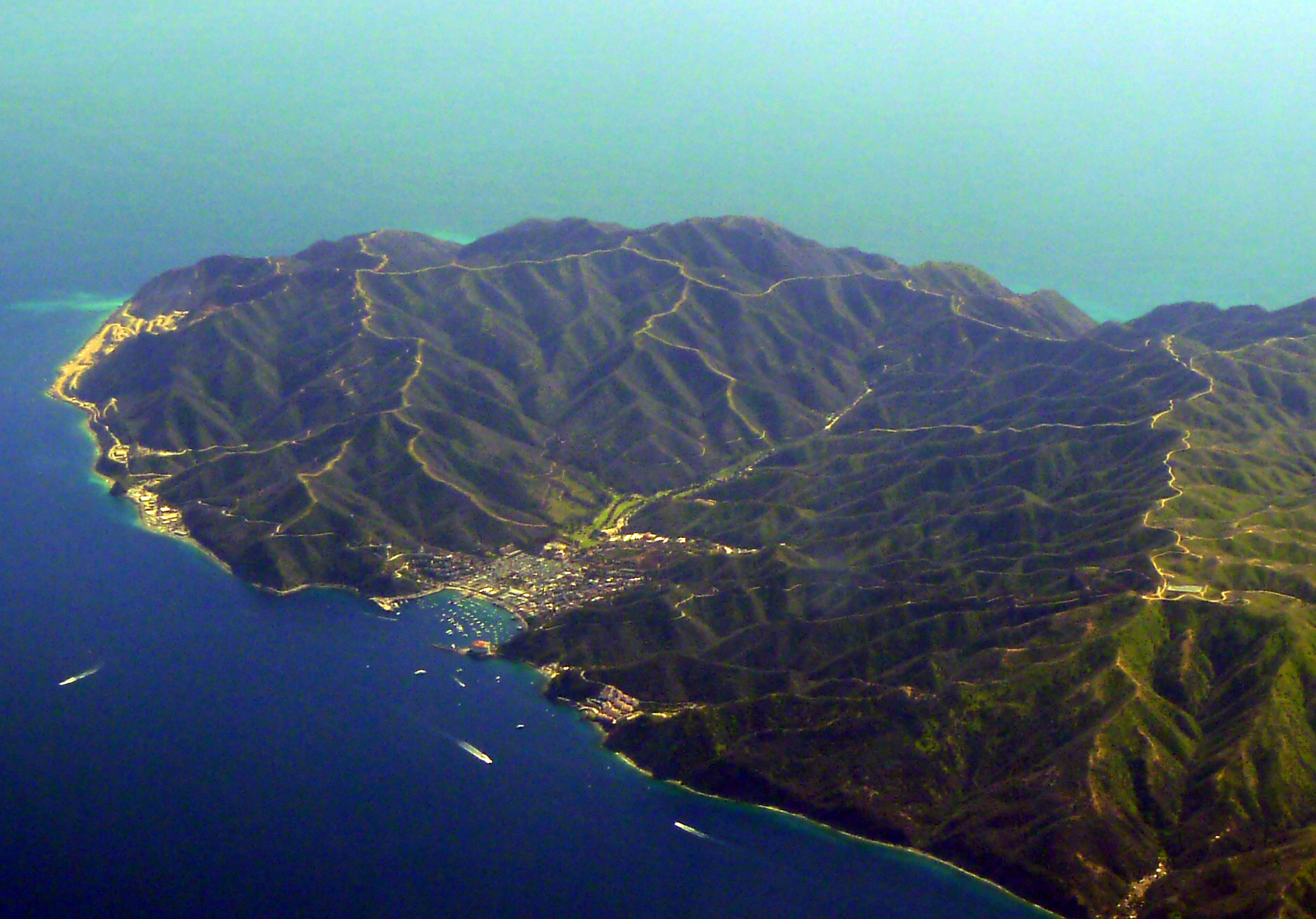 Santa Catalina Island California Wiki Everipedia