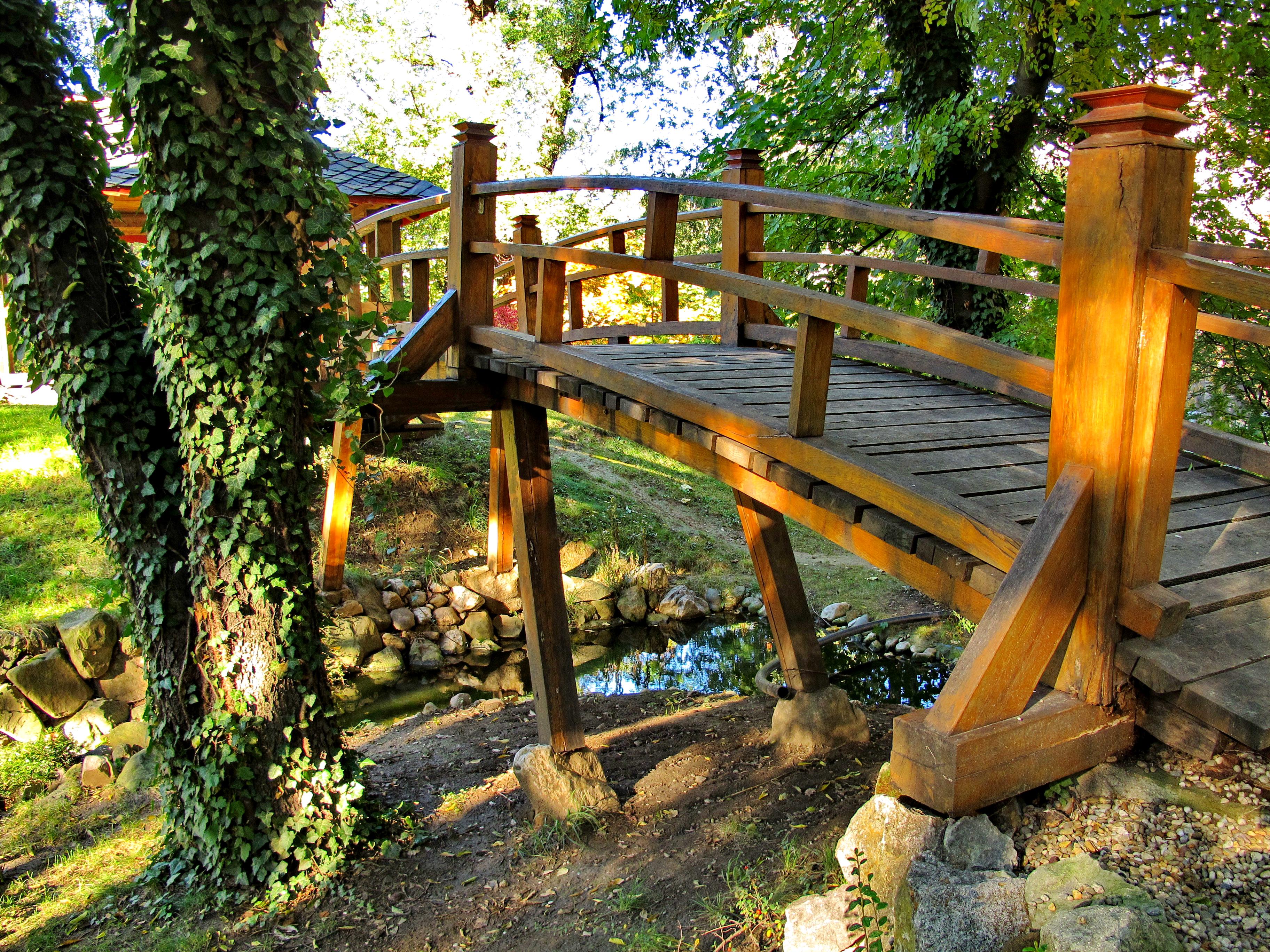 Botanička bašta Jevremovac, zaboravljeni raj u centru Beograda Botani%C4%8Dka_ba%C5%A1ta_Jevremovac%2C_Beograd_-_Japanski_vrt_21