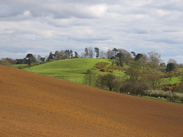Burton Dassett hills - geograph.org.uk - 3997