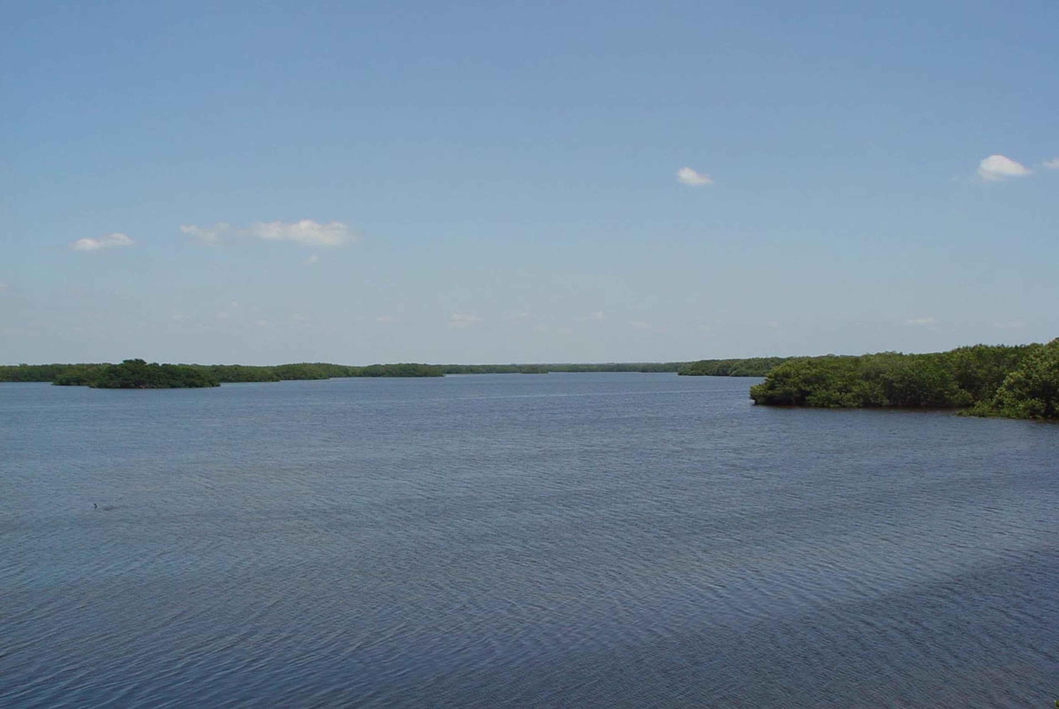File calm water lake wetland area jpg wikimedia commons