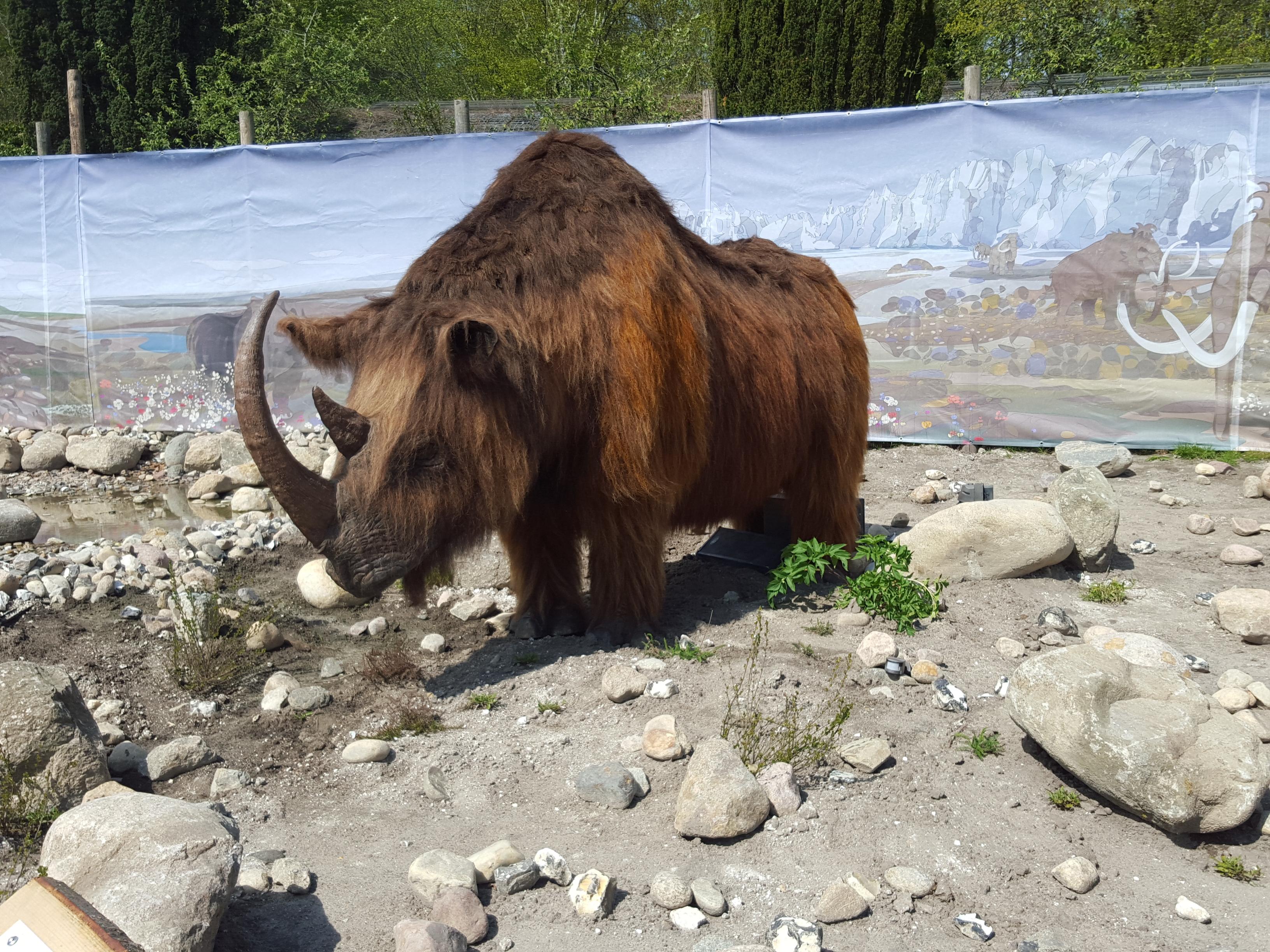 største dyr i norge