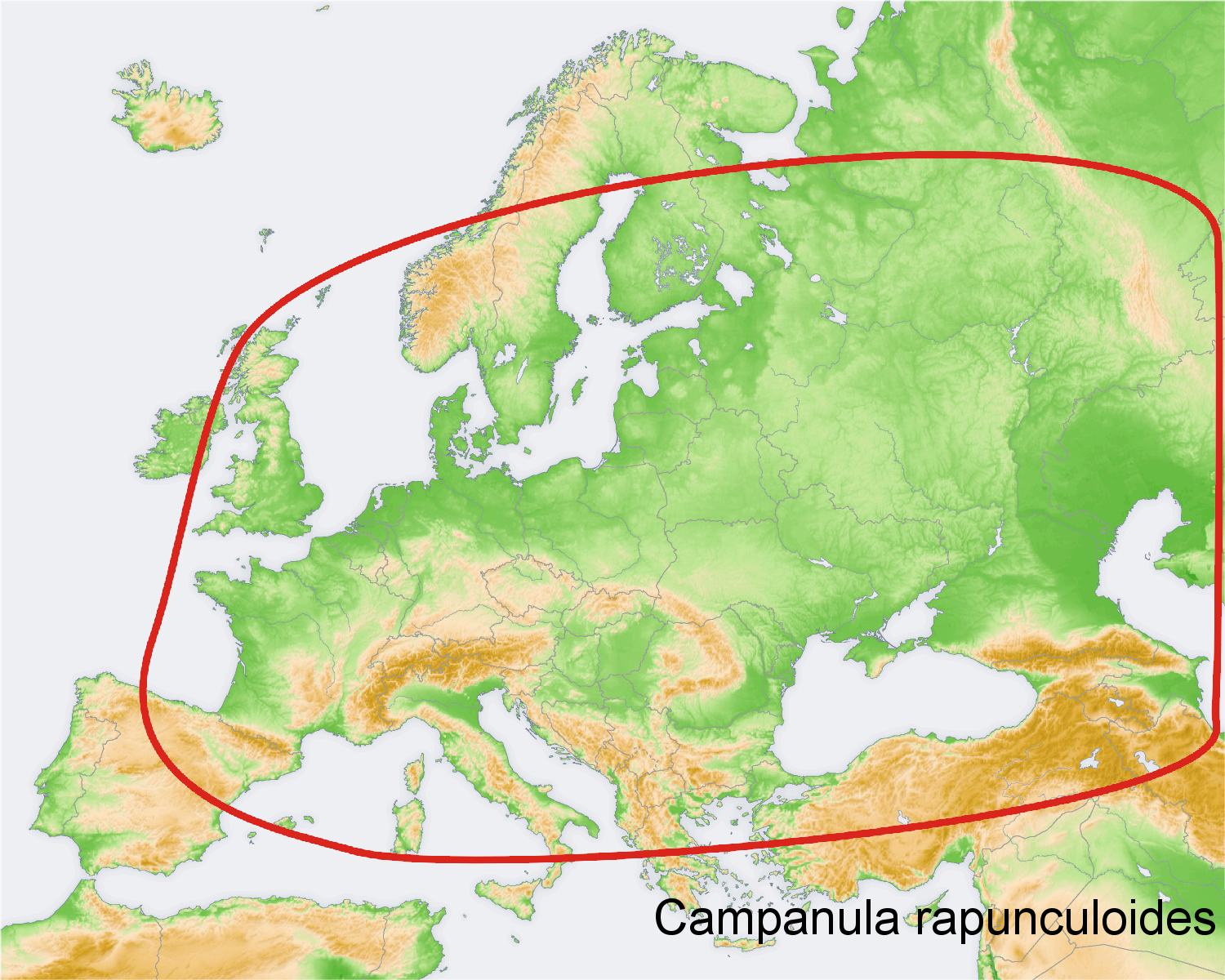 Datei:Distribution map Campanula rapunculoides.png – Wikipedia on