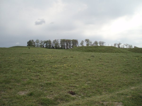 Five Hills barrows, Therfield Heath - geograph.org.uk - 415135