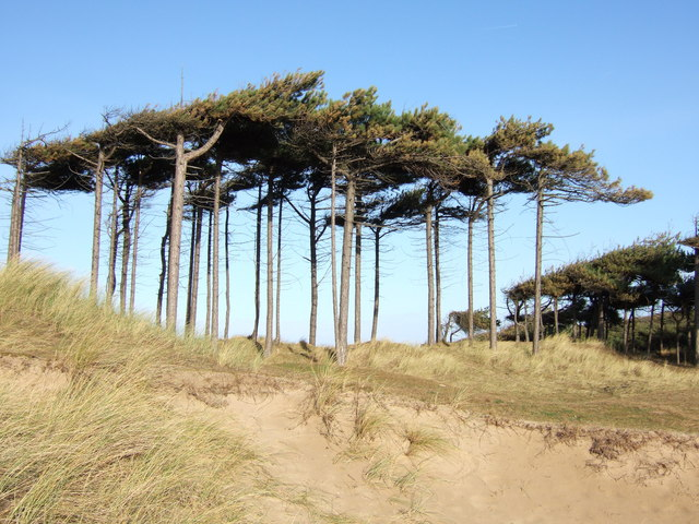 Formby - Formby Hills