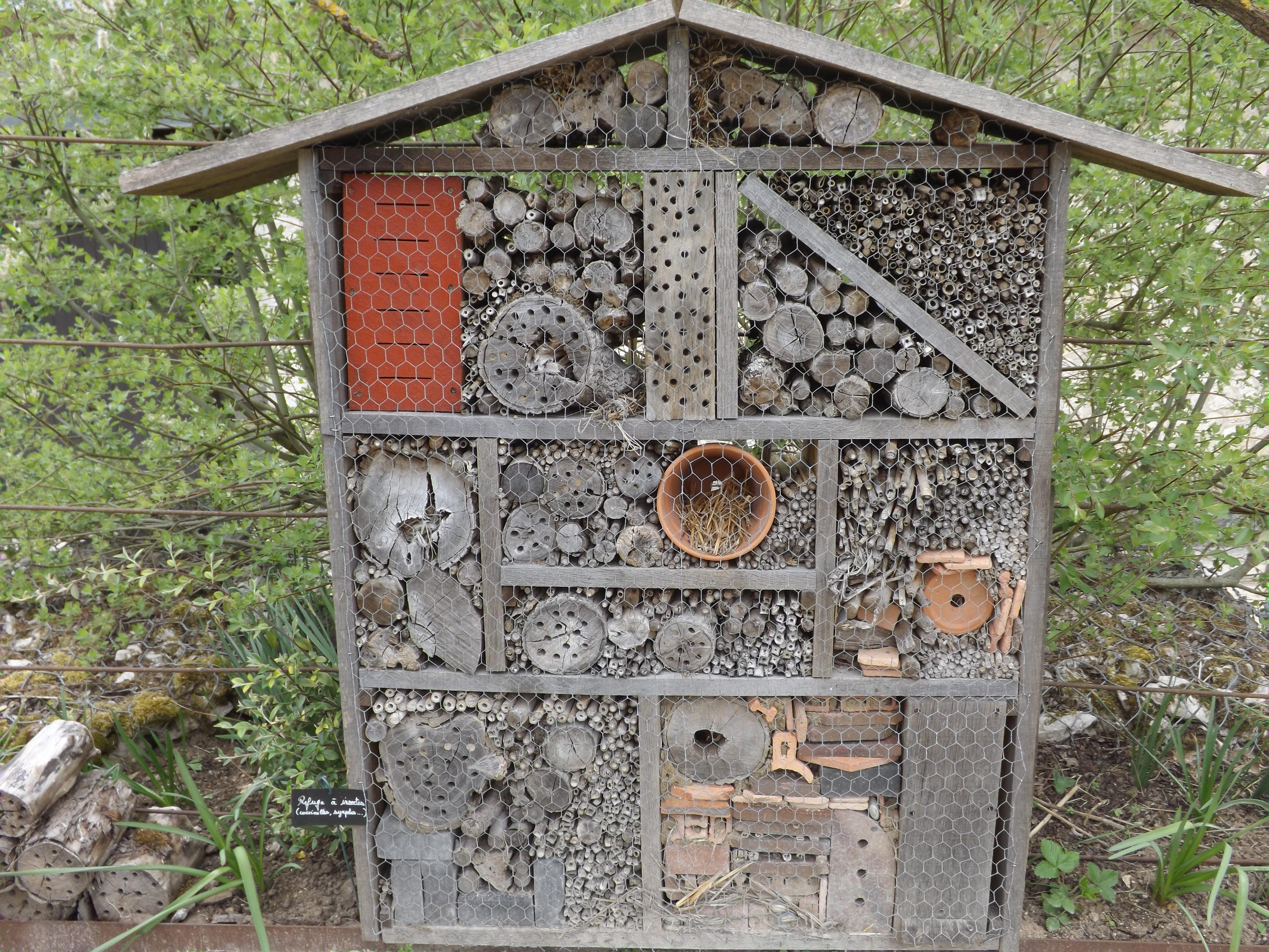 file h tel insectes chaumont sur loire jpg wikimedia. Black Bedroom Furniture Sets. Home Design Ideas