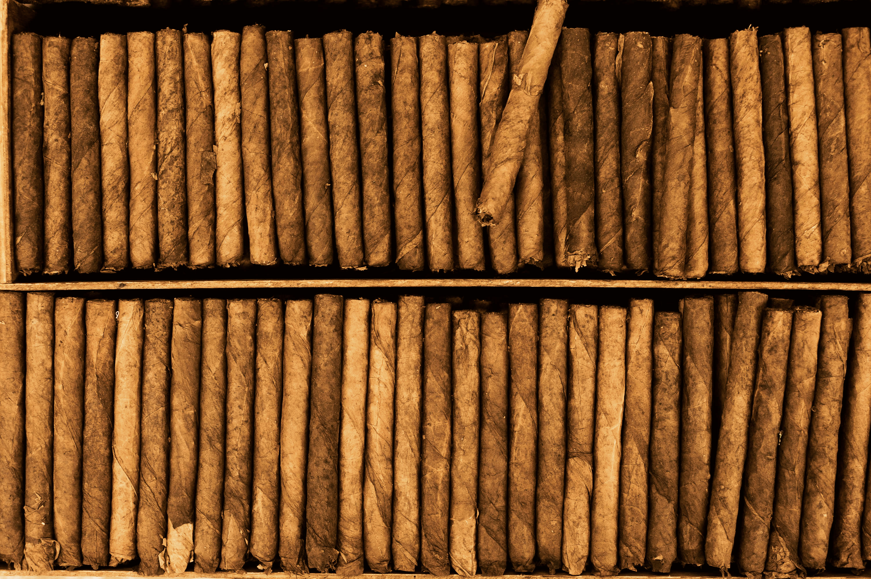 Cigar - Wikimedia Commons