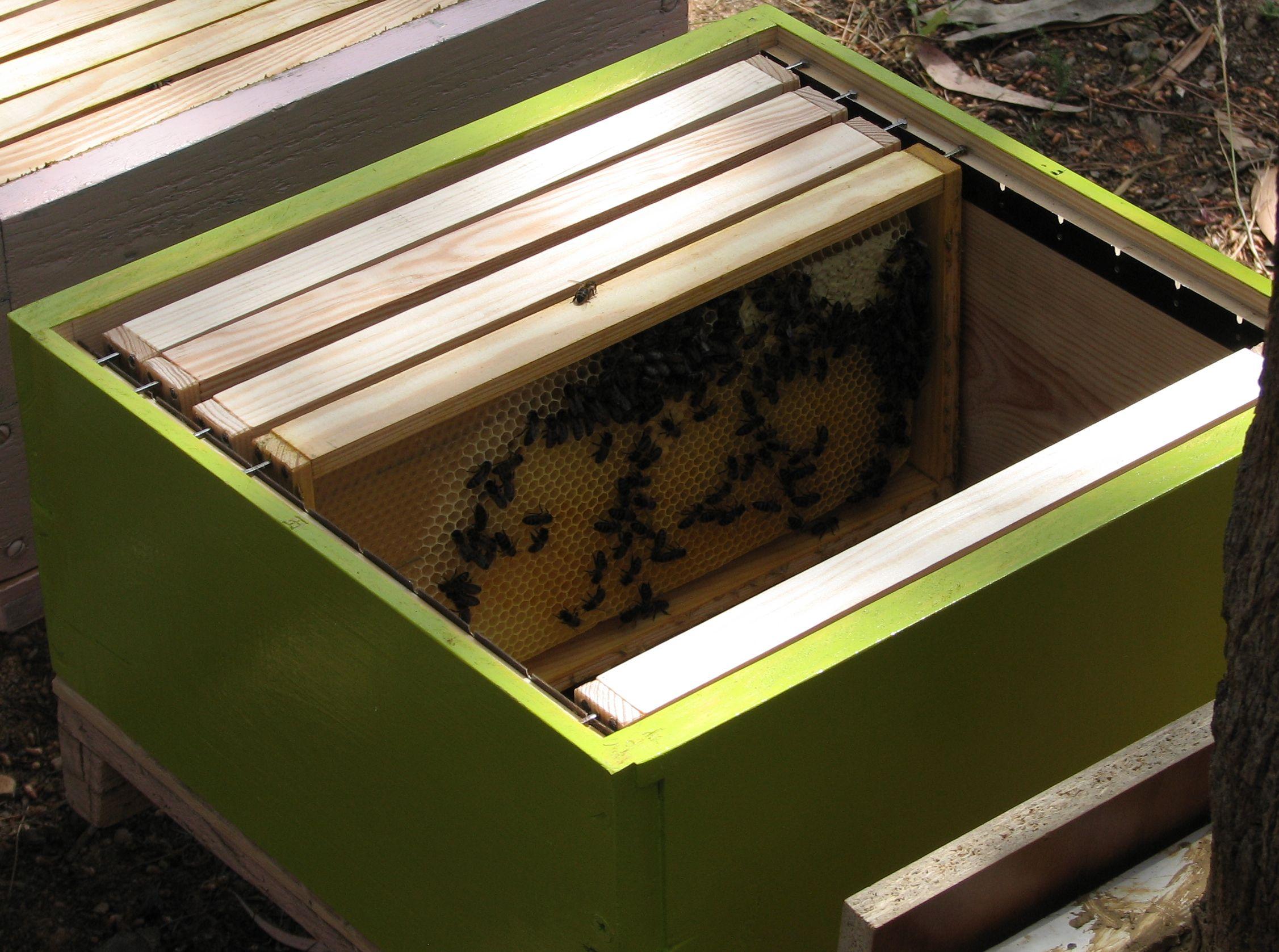 Arı Kovanı istek