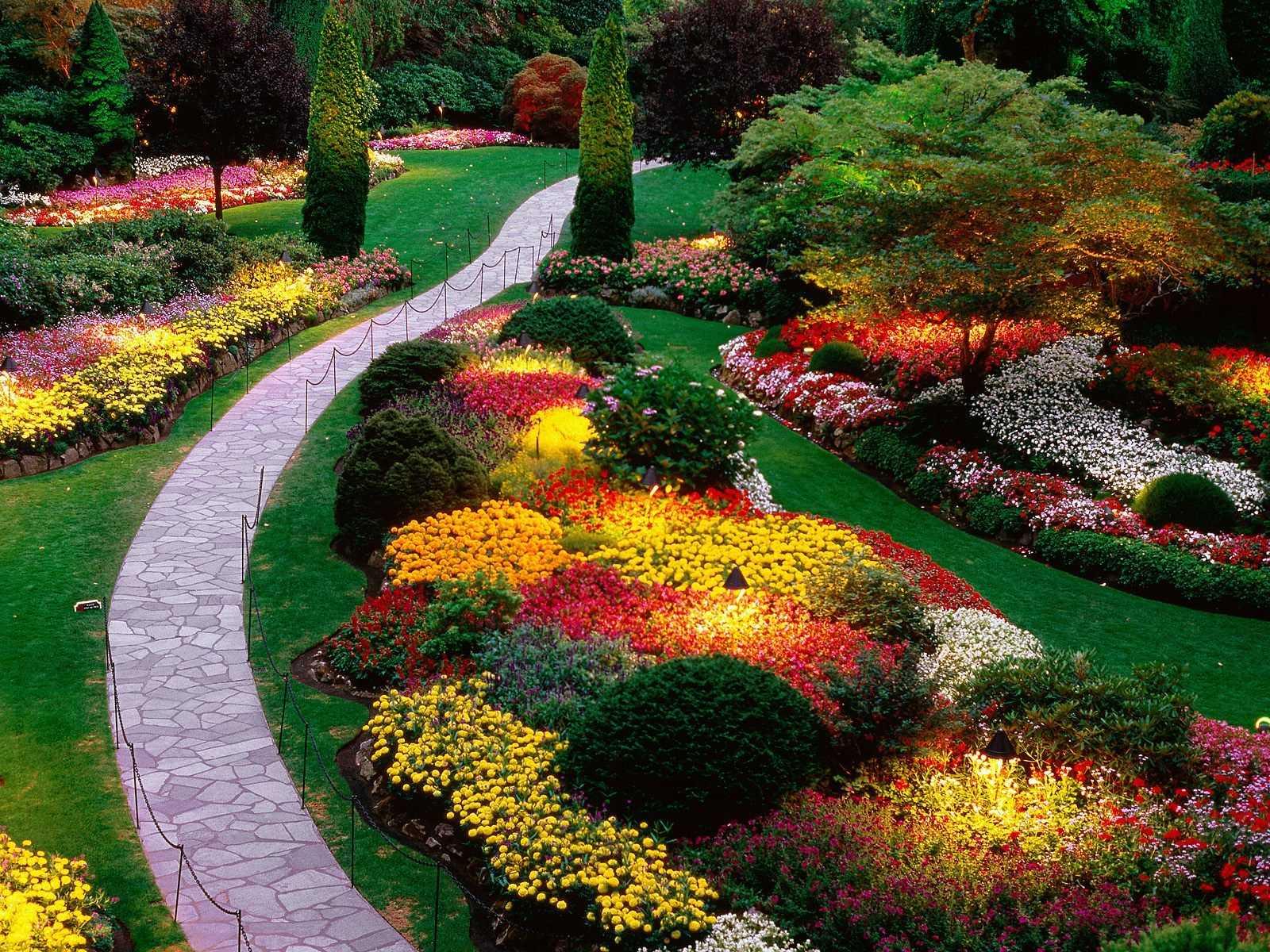 File:Jardines verticales.jpg - Wikimedia Commons