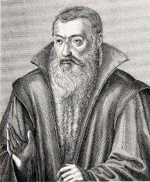 Johannes Sturm by Jacob van der Heyden.jpg