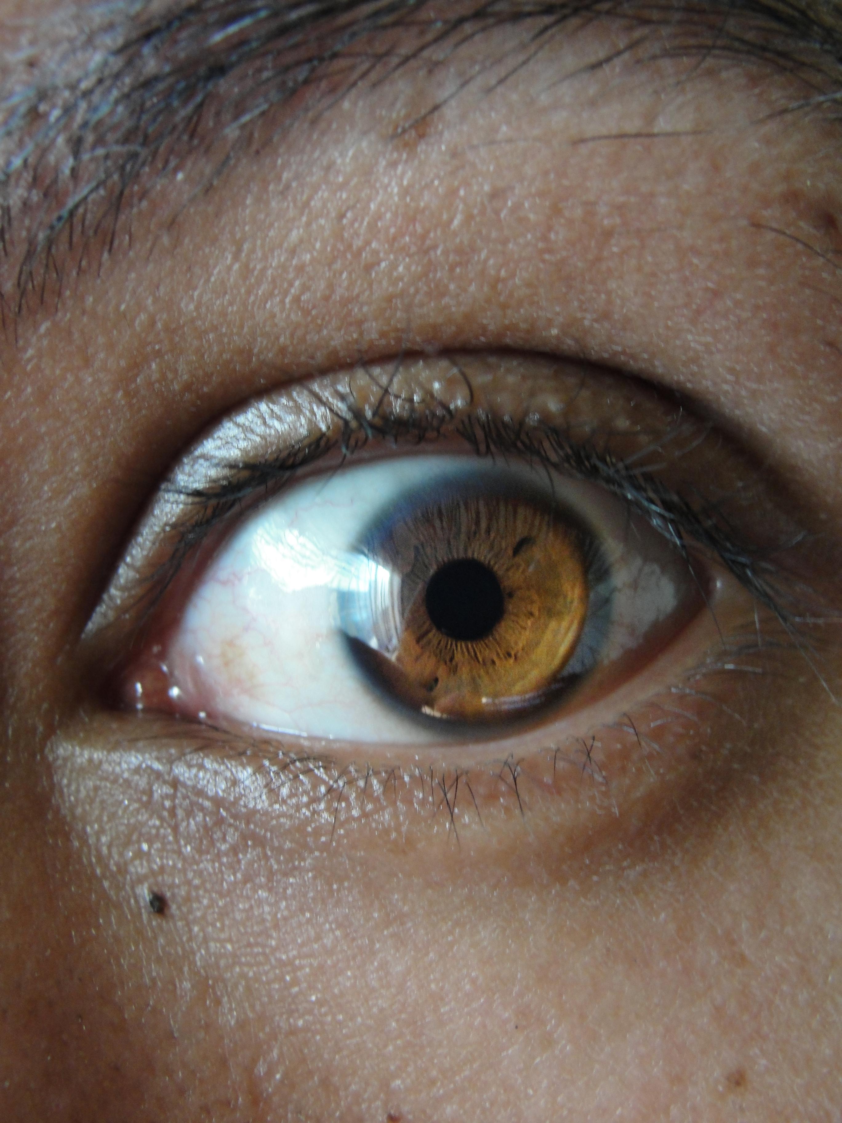 Brown Eye Makeup Tutorial: FANDOM Powered By Wikia