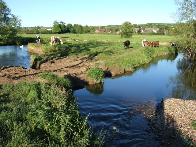 Meander on River Axe - geograph.org.uk - 440538