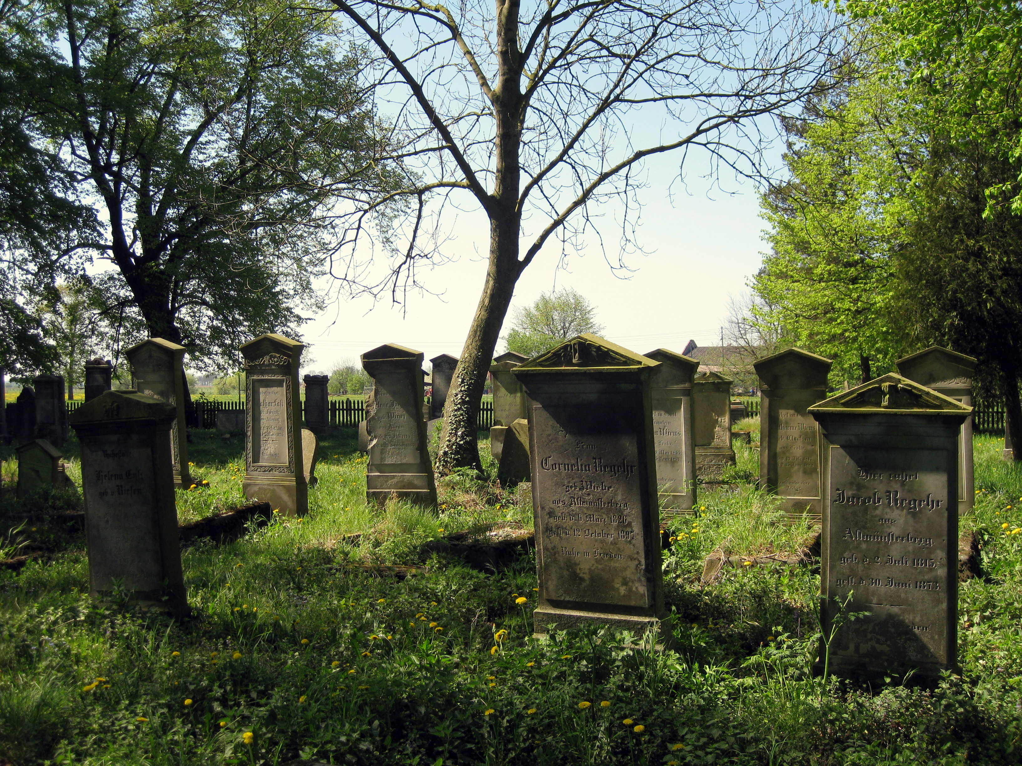 File:Mennonite Graveyard Heubuden 3.JPG - Wikipedia, the free ...