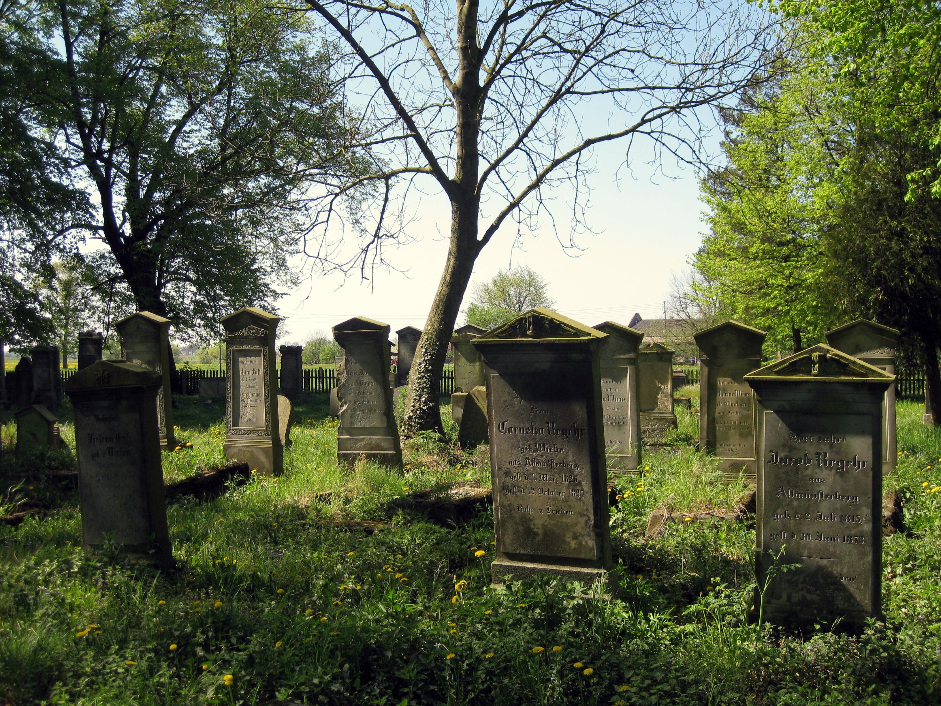 Mennonite_Graveyard_Heubuden_3.JPG