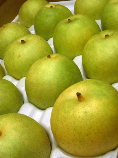 Nijusseiki nashi - Japanese pears by akira yamada.jpg