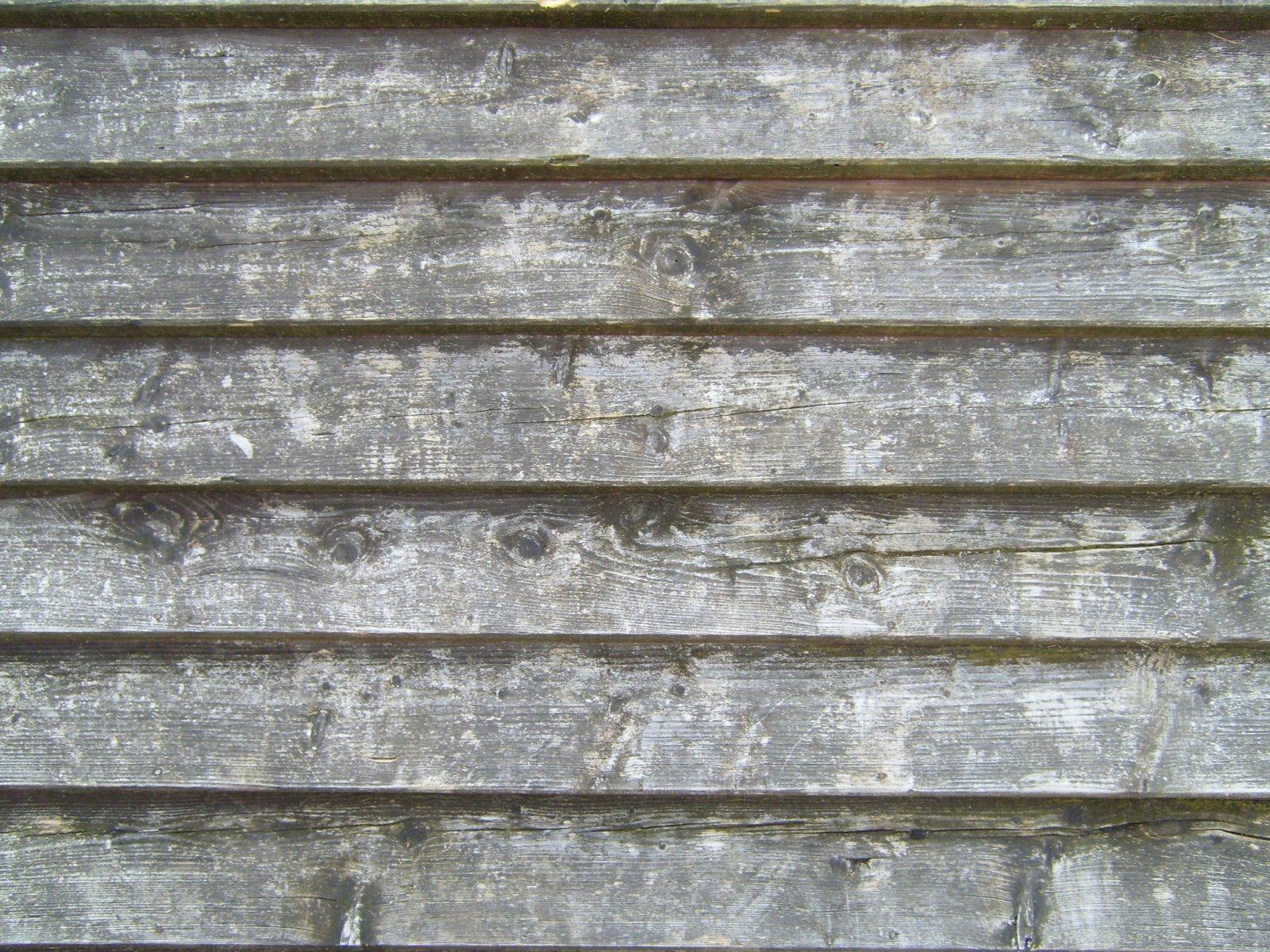Plank Walls In Kitchen