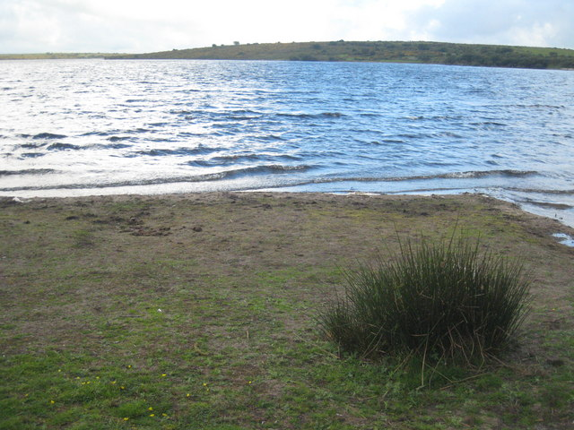 On the shore of Colliford Lake - geograph.org.uk - 1450225