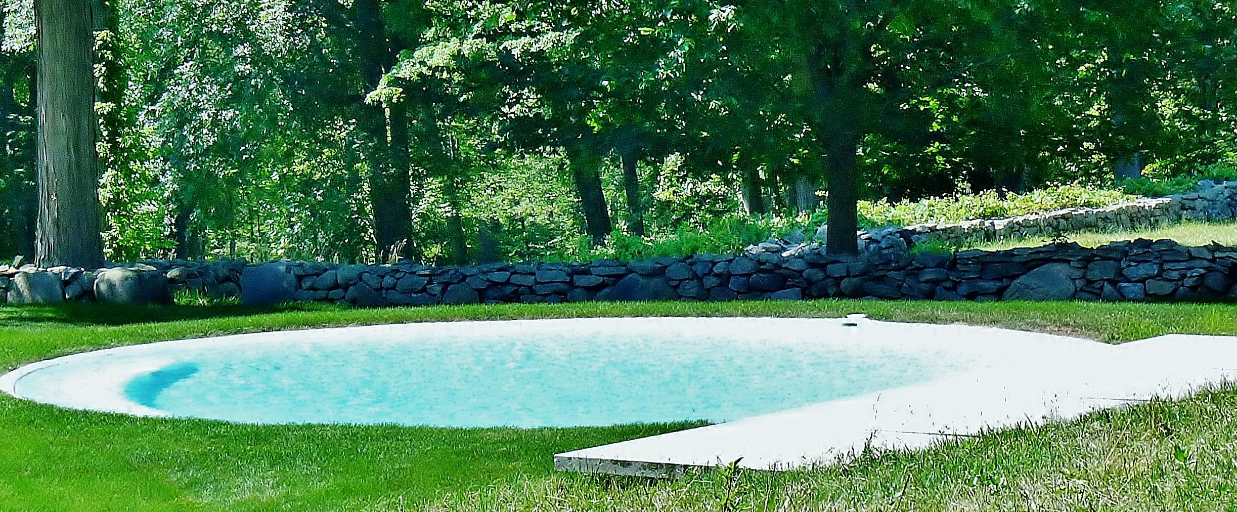 File Philip Johnson Glass House Martini Swimming Pool Jpg