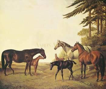 Pocahontas (horse) - Wikipedia
