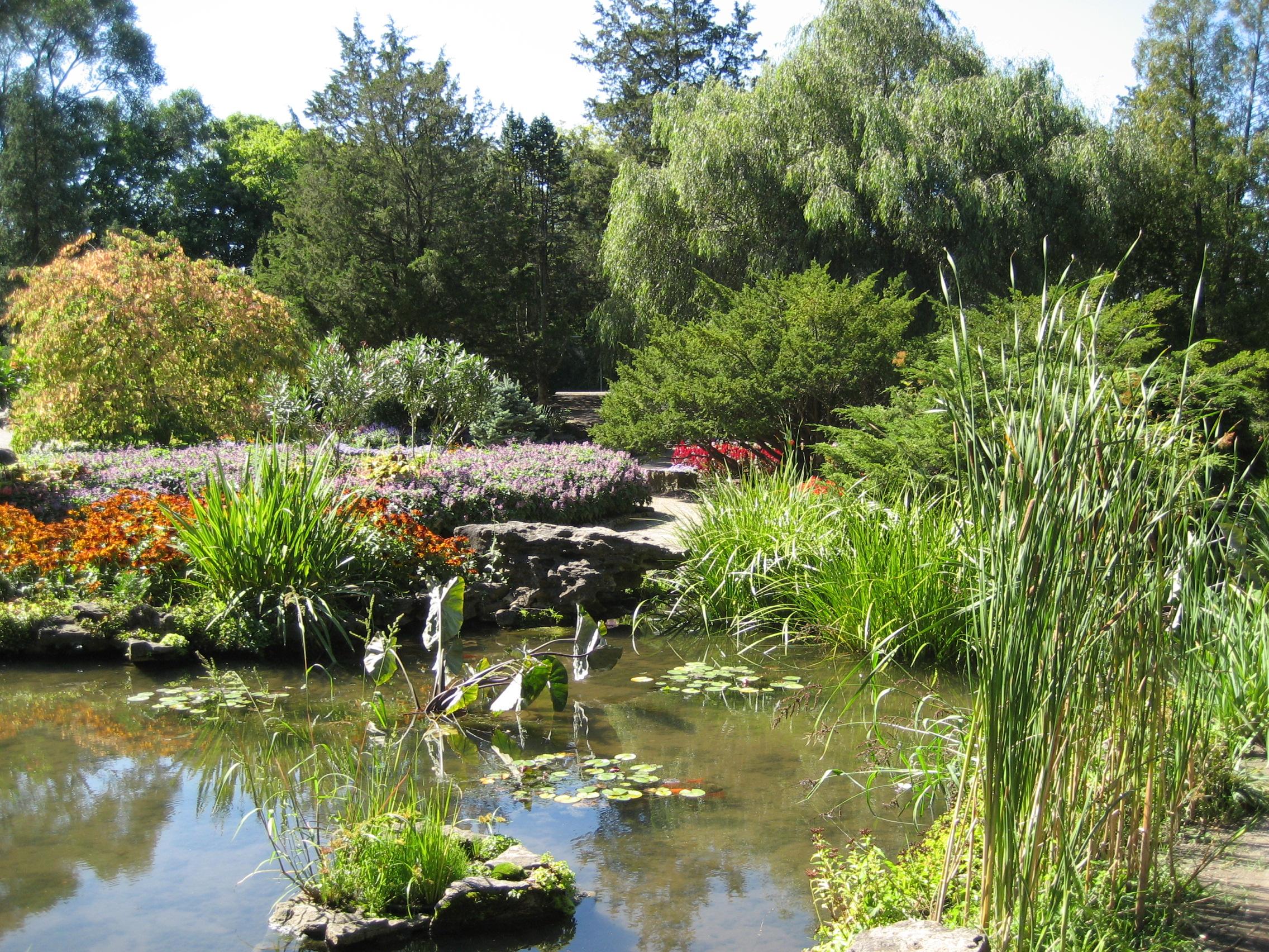 File Rock Gardens B JPG