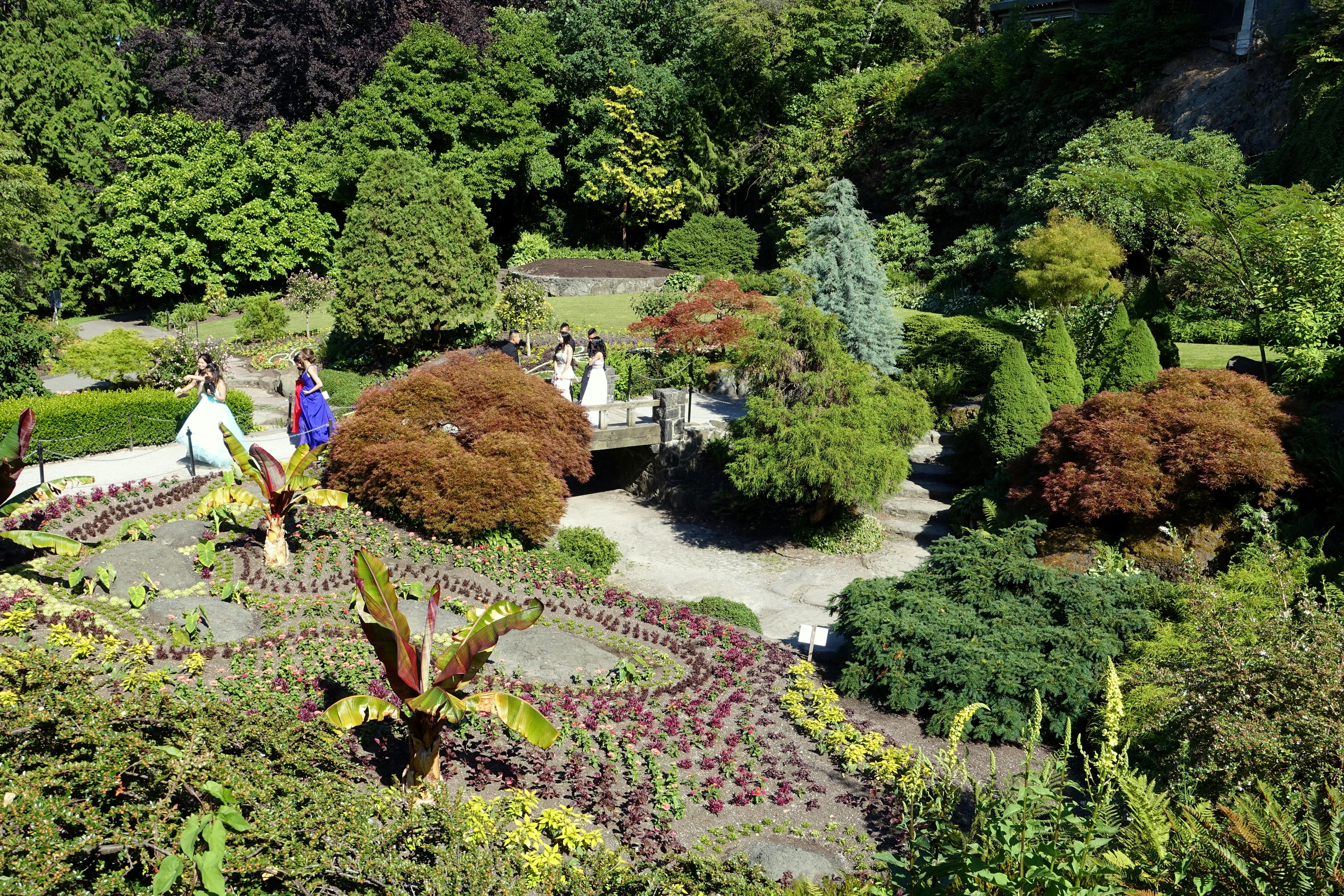 Small Quarry Garden - Queen Elizabeth Park - Vancouver, Canada - DSC07590.JPG