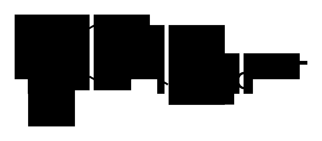 VX-2D-skeletal.png