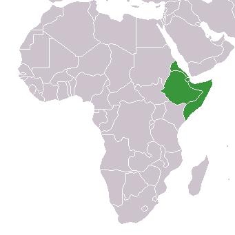 アフリカの角とイメージされる諸国の領域